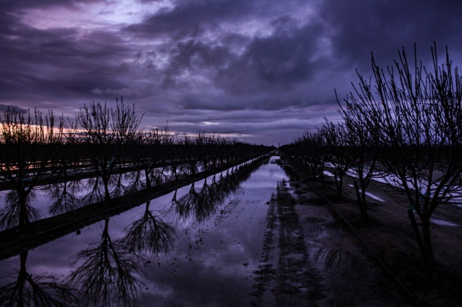 Driving on our way from Yosemite to San Fran, my friend and I saw this flooded field after the ra...