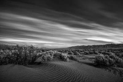 The Desert B&W