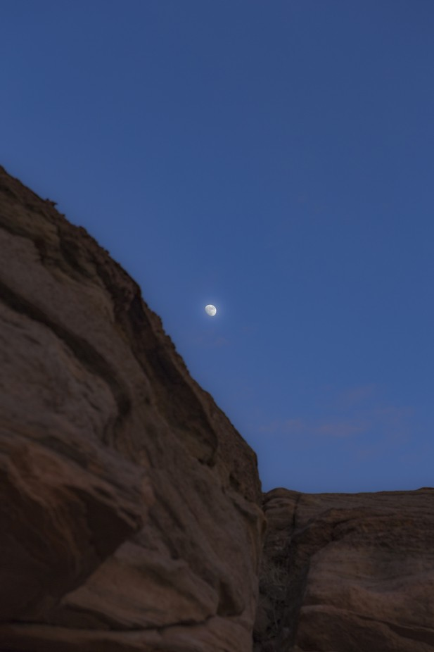 A crispy moon rides the side of a cliff