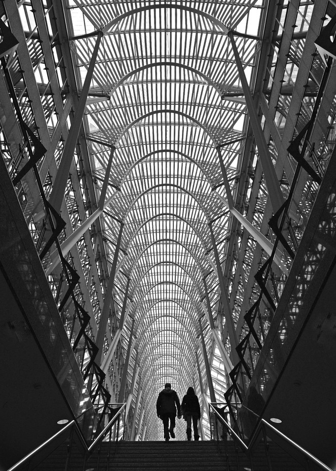 Silhouettes by RHRatcliffe - Ceilings Photo Contest