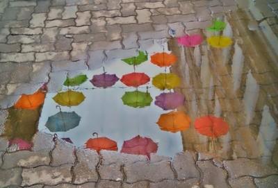 umbrella point of view