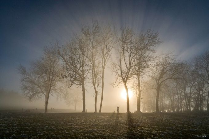 In a winter wonderlight by xanwhite - A Walk In The Mist Photo Contest