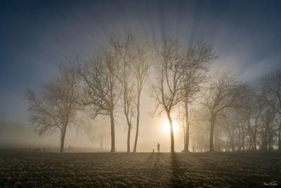 In a winter wonderlight