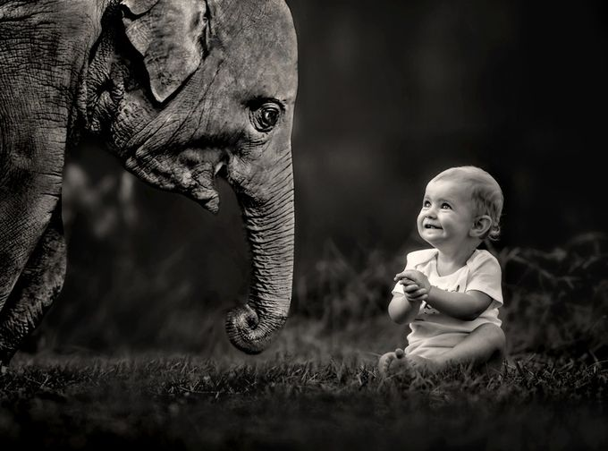 """Pure Joy"" by lisablevins - Opposites Photo Contest"