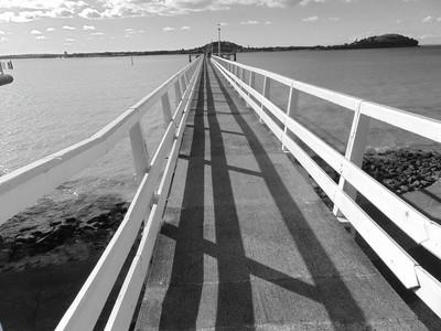 Okahu bay pier