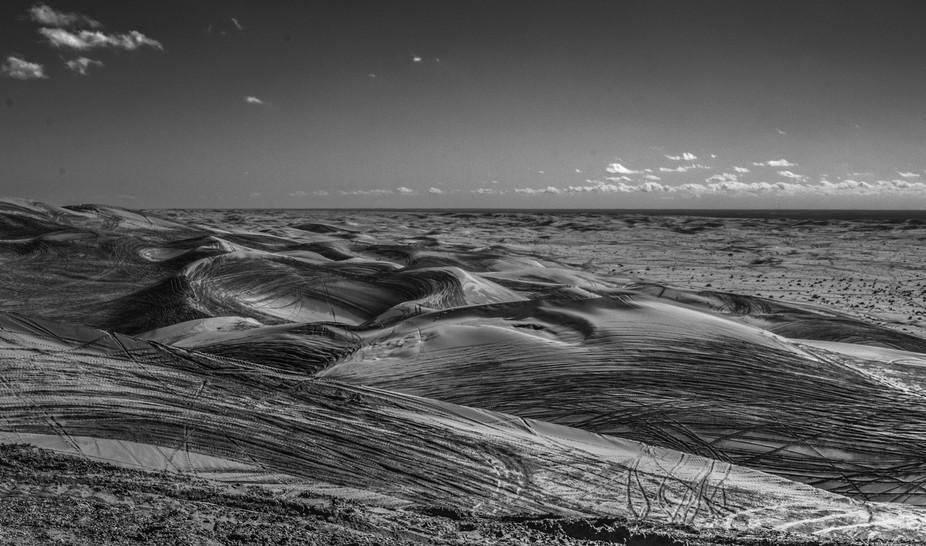 Tracks on the dunes