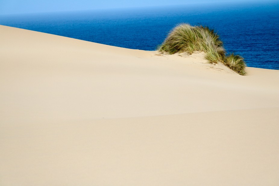 Om the dune