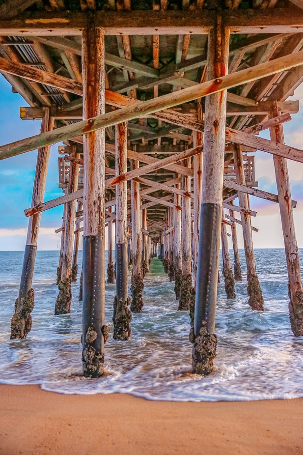 Under the Balboa Pier by vanessasiggardkay - The View Under The Pier Photo Contest