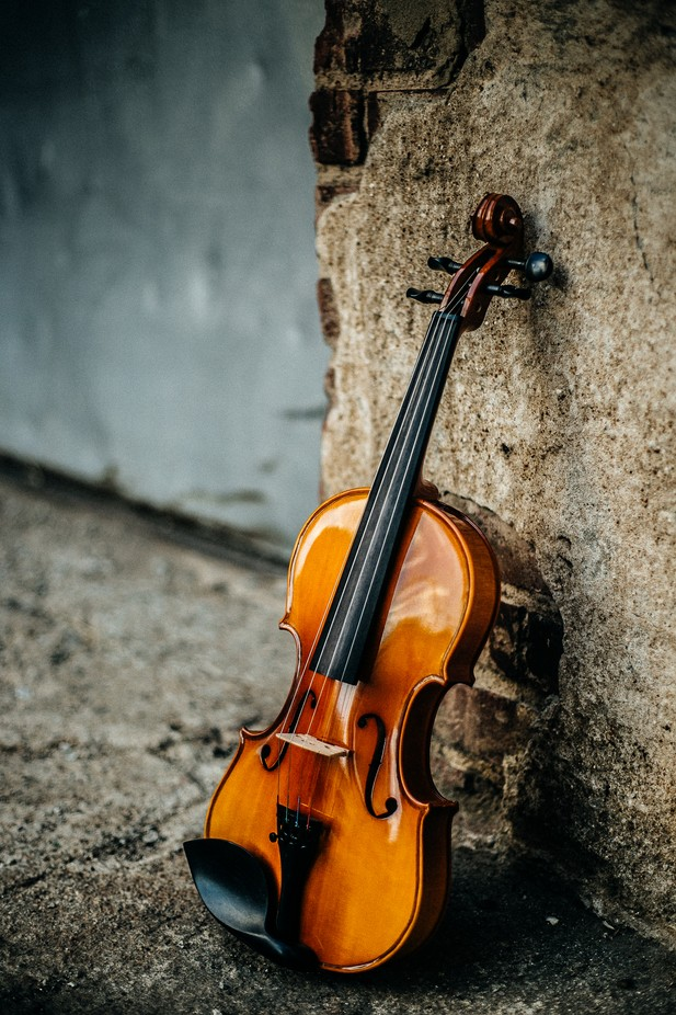 Violin Alley by inspyred - Musical Instruments Photo Contest