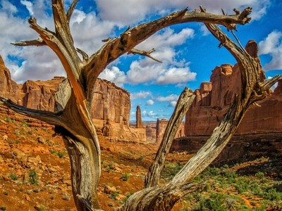 Arches NP View