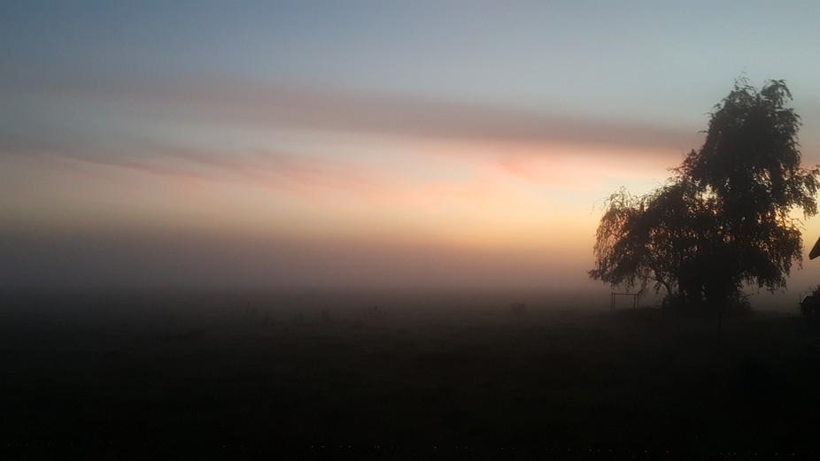 Morning sun with misty fog