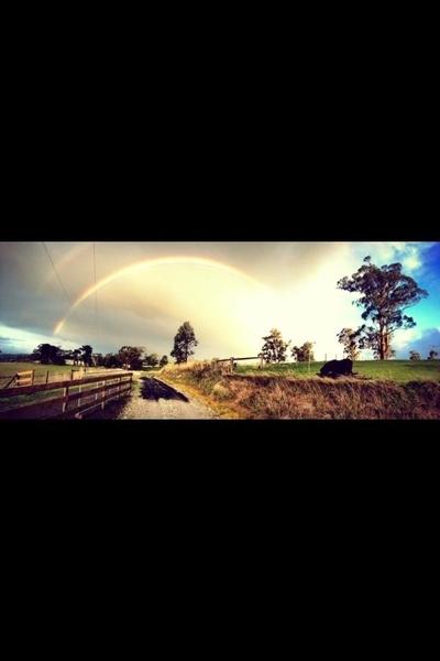 Below the Rainbow