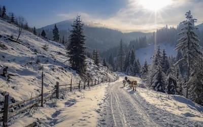 Verkhovyna's roads