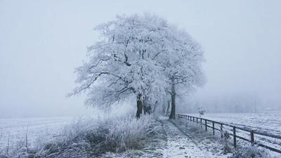 Winter wonderland Assen NL 3