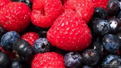PhotoSynthetic Fruity Background