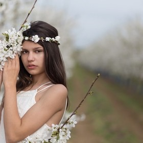 Beautiful girl and a blossomed cherry tree
