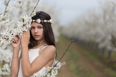 Young girl in a cherry garden
