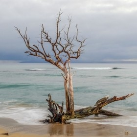 I took this photo at the Ukumehame Beach Park on Maui.  The sun was setting and a line of showers had moved through.  I was working with my long ...