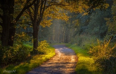 Follow me into a fairy-tale adventure!