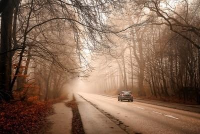 Misty Danish road