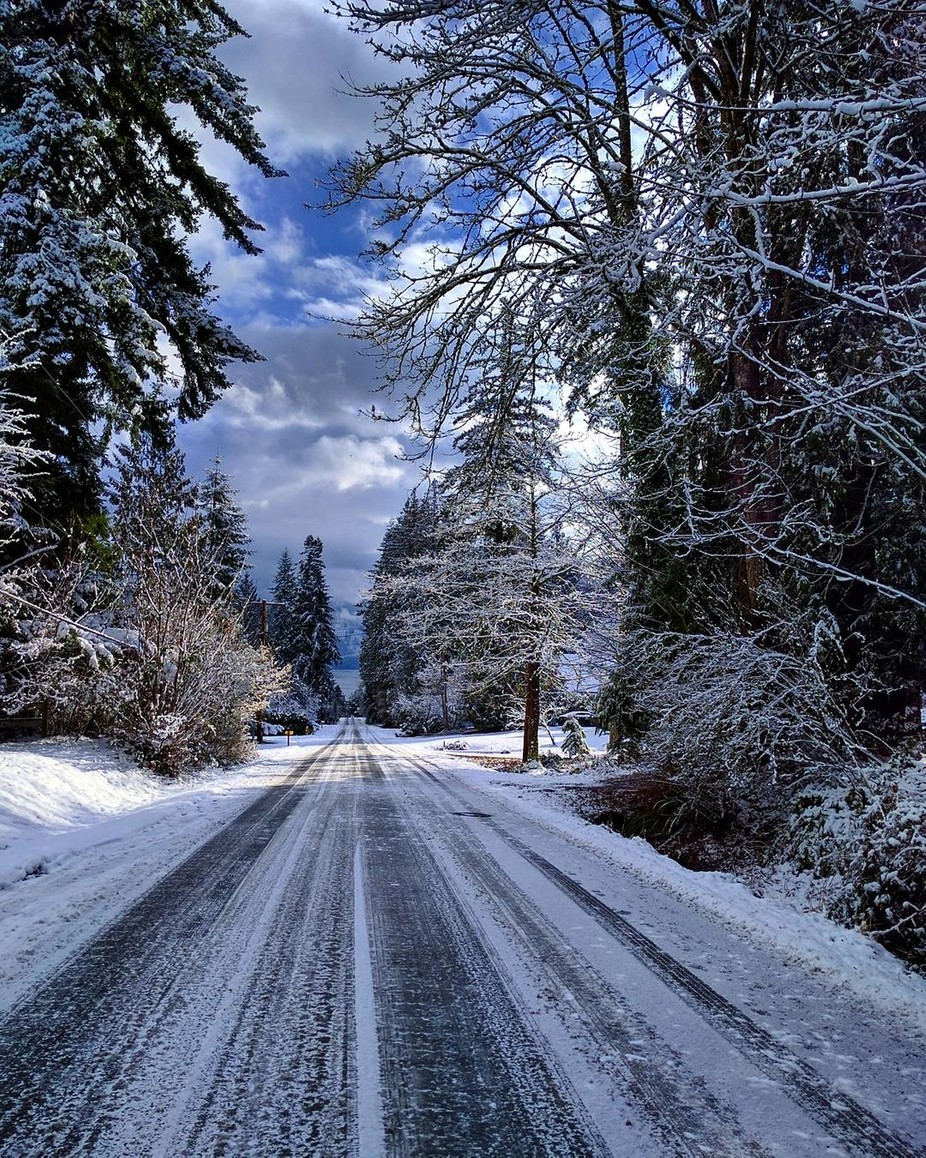 Snowy road by Chelselizapnw - A Road Trip Photo Contest
