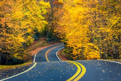 Fall on the Canaan Valley Loop Road