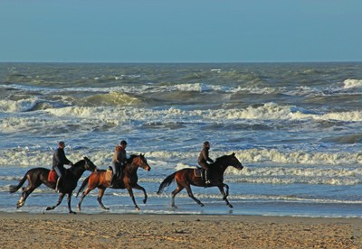 Horseriding at the beach