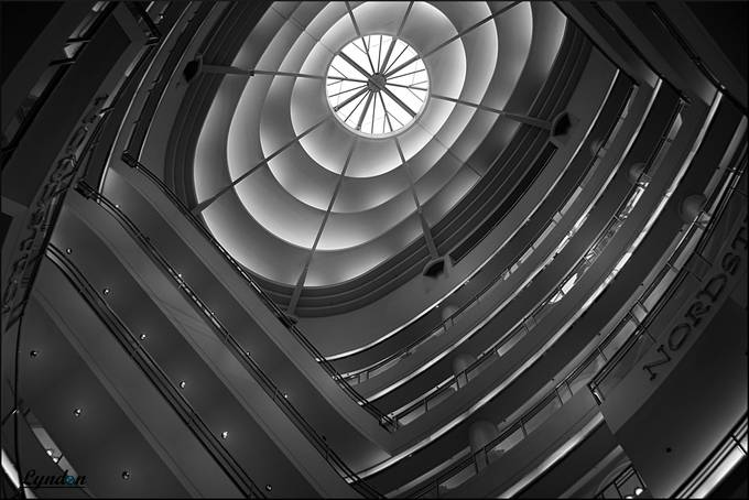 Nordstrom Monochrome by kiwidragonfly - Ceilings Photo Contest
