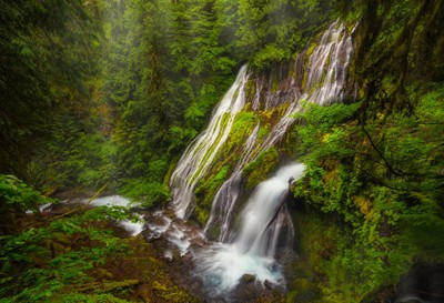Panther's Lair - Panther Creek Falls