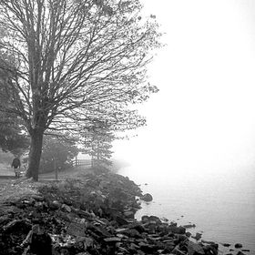 A bright foggy morning walk along the Bellingham Waterfront Park
