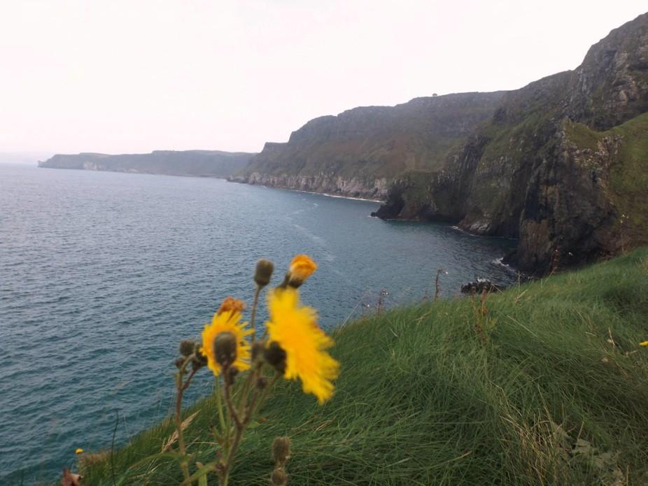 cliffs, North Antrim Ireland