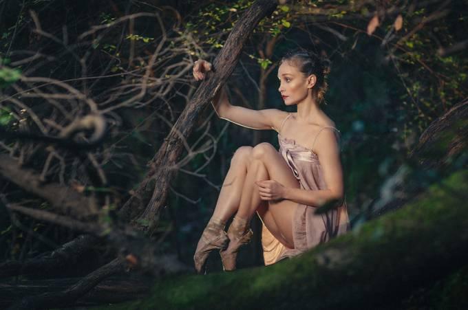 Dance me by Loza - Lets Dance Photo Contest