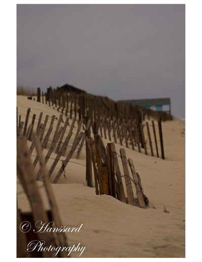 Outer Banks, NC fence along the beach. Our favorite beach here in North Carolina.
