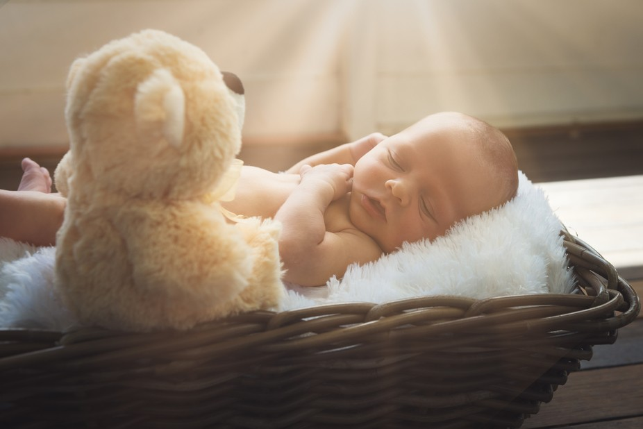 Sunlight, Baby and Teddy