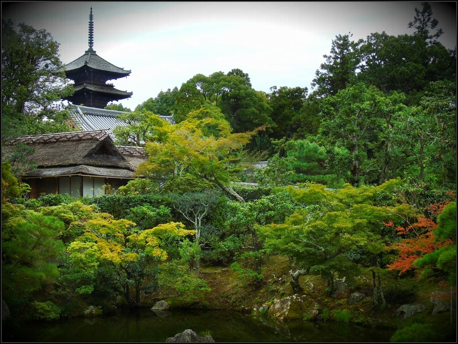 Sitting peacefully in a Japanese Garden, Kyoto