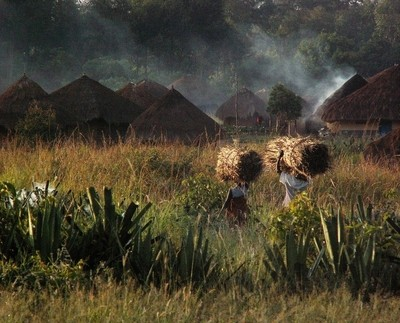 Early moring DR Congo Village (Best photography)