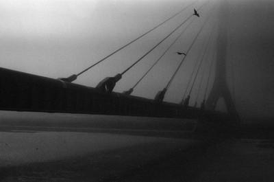 The Bridge, Saint-Petersburg, Russia