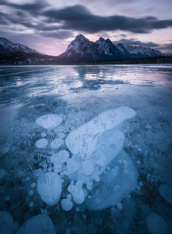 Ice Bubbles by tristantodd - Semitransparent Photo Contest