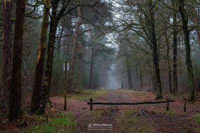 Path To Willibrorduskapel