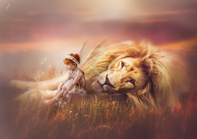 lion heart by kellymcdonald_0063 - Creative Reality Photo Contest