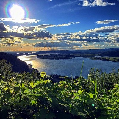 Summer day overlooking the Columbia River
