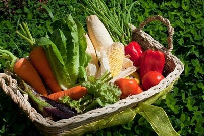 Organic Vegetables in Philippines