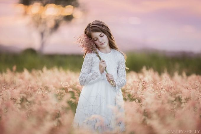 'A Field of Pink' by CarleyShellyPhotoArtistry - Elegant Moments Photo Contest