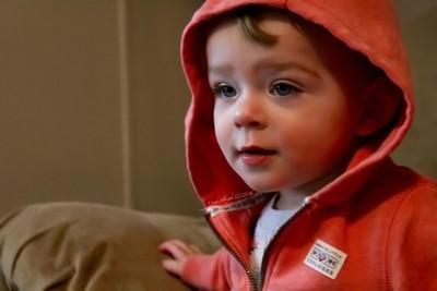 Curious Little Man