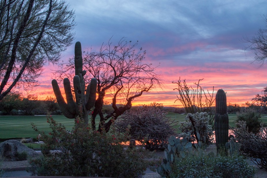 Sunrise over the golf course at The Boulders in Scottsdale, Arizona this morning was amazing!