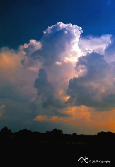 Summer Storms brewing