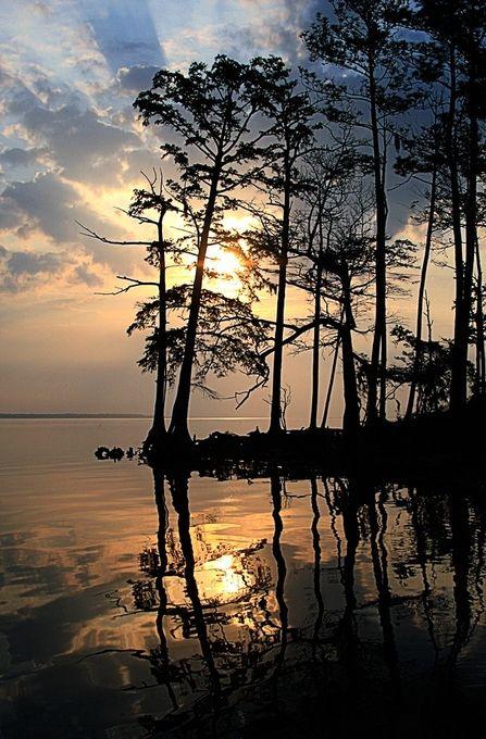 Carolina Coastline