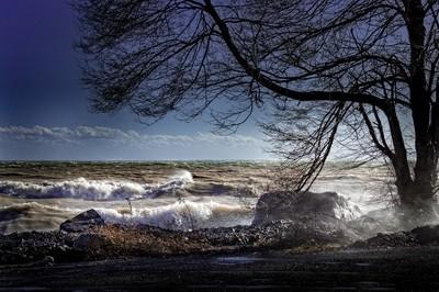 Wild-water-in-Dover-2