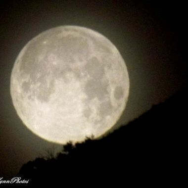 moon setting on Mt Graham