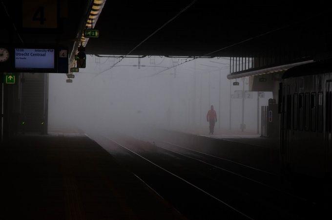 the fog by braddmc - A Walk In The Mist Photo Contest